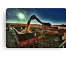 Golden Harvest Canvas Print