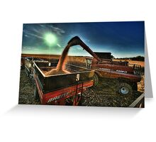 Golden Harvest Greeting Card