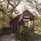 Tiny post office, Kaweah, CA by yakkphat