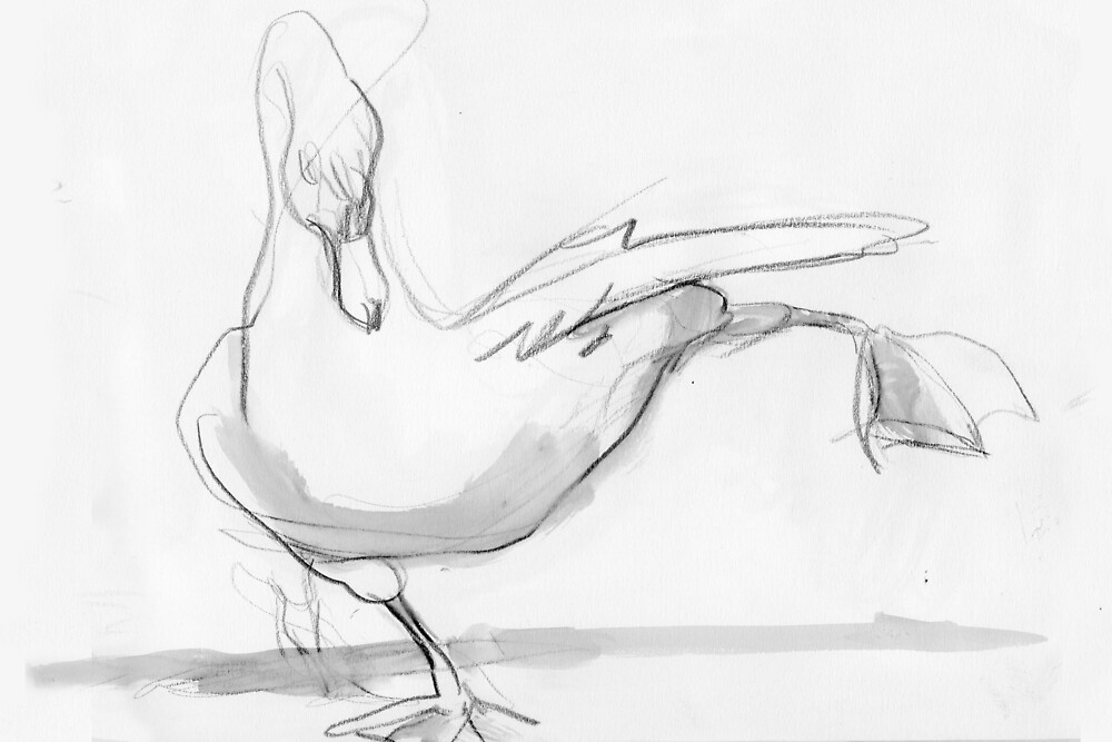 Swan Stretch by WoolleyWorld