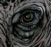 Elephant Eye by WoolleyWorld