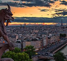 France. Paris. View with Gargoyle from the Notre Dame de Paris.. by vadim19