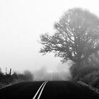 Foggy Morning Drive by RIDGEWORKS