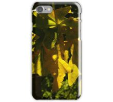 nature and sun II - naturaleza y sombra iPhone Case/Skin