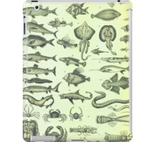 Vintage Sealife Nautical Chart iPad Case/Skin