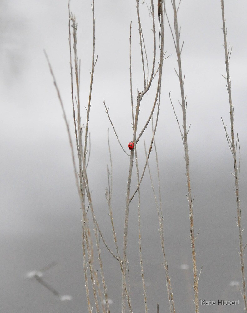 Between a Stick and a Wet Place by Kate Hibbert