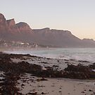 Camps Bay, South Africa by Sophie Gonin