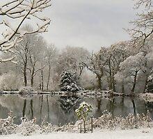 Private Lake by Kj Bentley