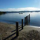Silvery Morning - Sandy Bay, Tasmania by RainbowWomanTas