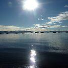 Spring morning, Sandy Bay, Tasmania by RainbowWomanTas
