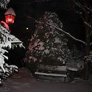 Snowy Seasons Greetings by eoconnor