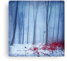 Cold Forest Canvas Print