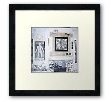 White Swans Framed Print