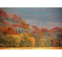 Top Of Autumn Photographic Print