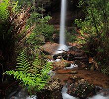 Little Paradise falls by Donovan wilson