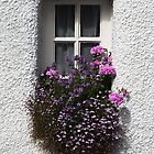 Little Window of Culross by simpsonvisuals