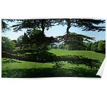 England,s Greenery Poster