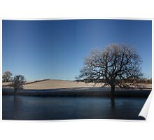 frozen trees, fields and pool Poster