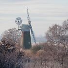 Turf Fen windmill, Norfolk Broads. by Sarah Weston