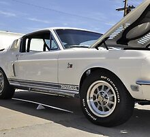 '68 Shelby GT 428 by Wviolet28