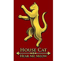 House Cat Photographic Print