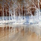 Icy Reflections  by ©The Creative  Minds