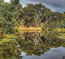 And His Ghost May Be Heard - Wonga Wetlands, Albury NSW - The HDR Experience by Philip Johnson
