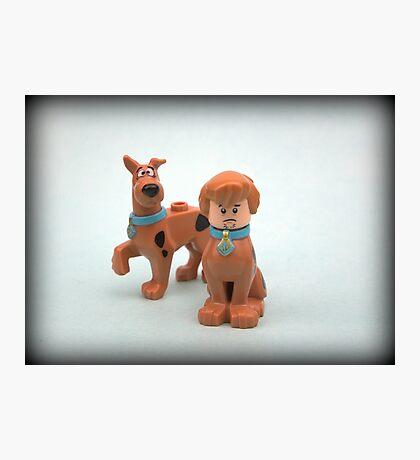 Scooby & Shaggy Doo  Photographic Print