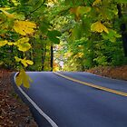 Lonely Road In Virginia by SuddenJim