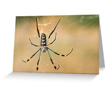 Golden Silk Orb-weaver Greeting Card