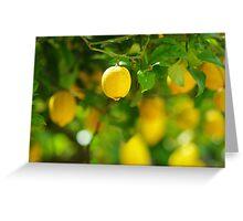 lemon abundance Greeting Card