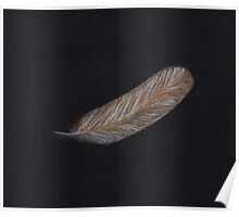 Golden Angel Feather Poster