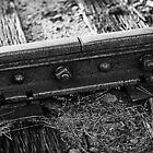 Rustaceans IV: Rail to Nowhere by mojo1160