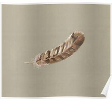 Owl Feather Poster