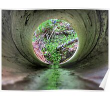 Water Pipe - Blackbutt Nature Reserve Poster
