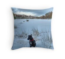 There's A Cold Wind Blowing In The South.. Throw Pillow