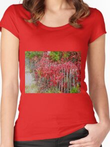 Virginia Creeper on Dune Fence - Fall Colors Women's Fitted Scoop T-Shirt
