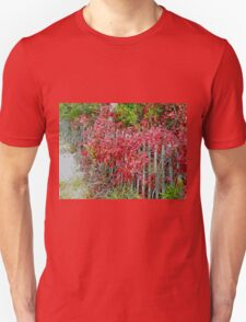 Virginia Creeper on Dune Fence - Fall Colors Unisex T-Shirt