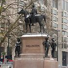 Duke Of Wellington by ciaobella2u