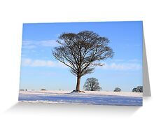 Alone at Winter Time Greeting Card