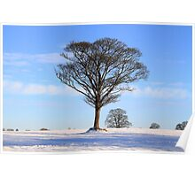 Alone at Winter Time Poster