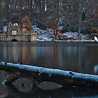 Winter Wonderland by paula smith