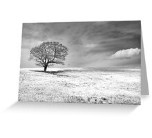 Between earth and sky Greeting Card