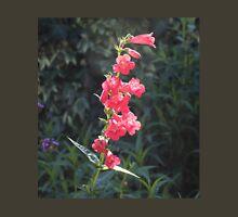 Sunlit Pink Penstemon Flower T-Shirt