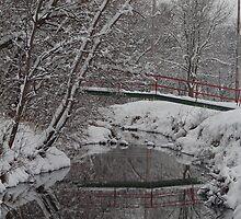 Snowy Crossing by Jeff VanDyke