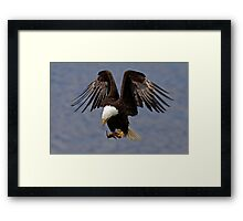 Powerful Descent Framed Print