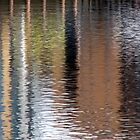 Reflections-01 by Vic Singh