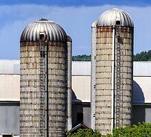 Farm Silos by Edward Fielding