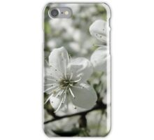 Apple tree blossoms. iPhone Case/Skin