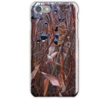 chokeberry with bush iPhone Case/Skin